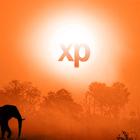 Windows XP rejoint le cimetière des éléphants